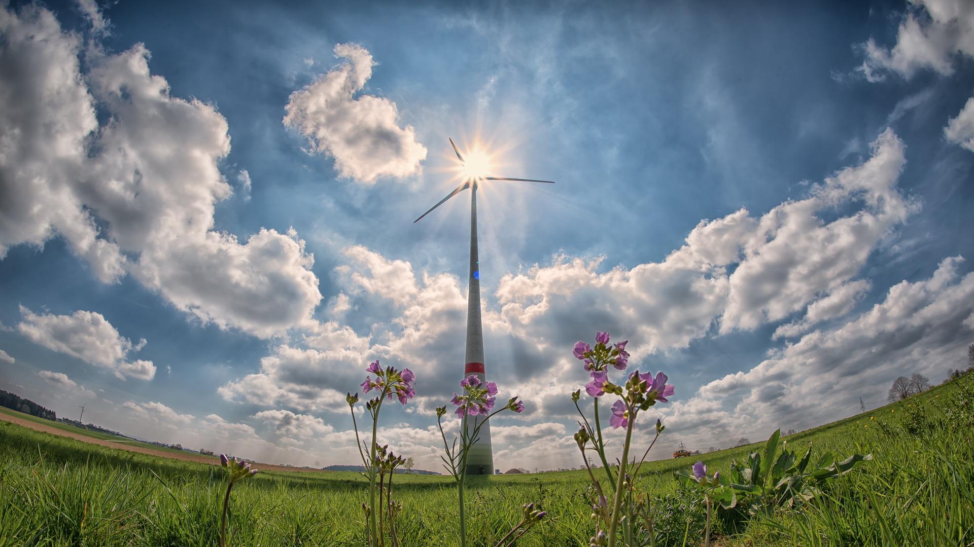 Większość Polek i Polaków popiera proklimatyczne działania Unii Europejskiej [wyniki badań]